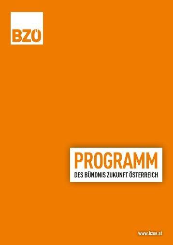 Parteiprogramm_2013_V1
