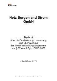 Gleichbehandlungsbericht - Netz Burgenland