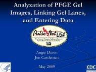 3. Analysis of tiff images in BioNumerics, linking of lanes to isolates ...