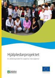 Hjälpledarprojektet - Skellefteå kommun