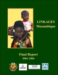 final report on activities in Mozambique - Linkages Project