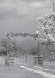 El Bagual - Aves Argentinas