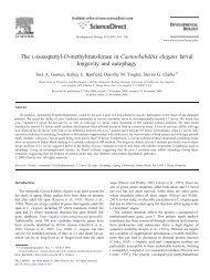The L-isoaspartyl-O-methyltransferase in Caenorhabditis elegans ...