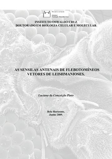 Instituto Oswaldo Cruz Doutorado em Biologia Celular e ... - Fiocruz