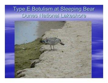 Type E Botulism at Sleeping Bear Dunes National Lakeshore