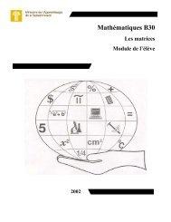 Mathématiques B30: Les matrices; Module de l'élève