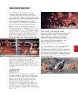 Nadace na ochranu zvířat STŘEDNÍ A VÝCHODNÍ ... - Klub Gaja - Page 5