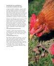 Nadace na ochranu zvířat STŘEDNÍ A VÝCHODNÍ ... - Klub Gaja - Page 7