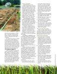 Drainfield Rehabilitation - Page 2