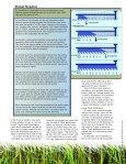 Drainfield Rehabilitation - Page 4