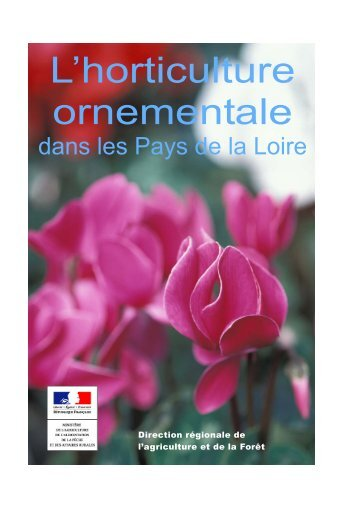 L'horticulture ornementale L'horticulture ornementale - Direction ...