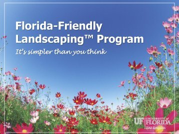 The Florida-Friendly Landscaping™ Principles - Manatee County ...