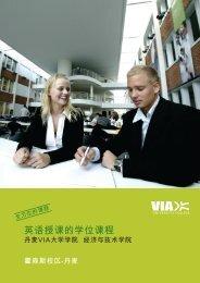 01178 International study programmes på kinesisk 0.indd