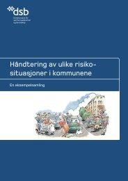 HÃ¥ndtering av ulike risikosituasjoner i kommunene - Direktoratet for ...