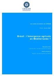 Brésil : l'émergence agricole en Méditerranée ?