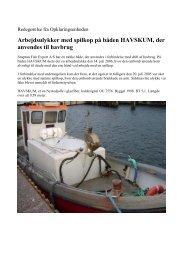 Arbejdsulykker med spilkop på båden HAVSKUM ... - Søfartsstyrelsen