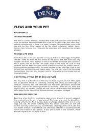 FLEAS AND YOUR PET - Denes Natural Pet Care