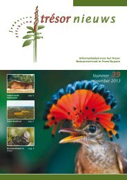Nummer 39 november 2013 - Trésor