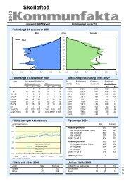 Statistik Skellefteå kommun 2010 från SCB (pdf, nytt fönster)