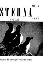Sterna, bind 8 nr 8 (PDF-fil) - Museum Stavanger