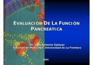 Evaluación de la Función Pancreática - Facultad de Medicina UFRO