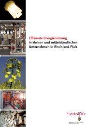 Effiziente Energienutzung in kleinen und mittelständischen ...