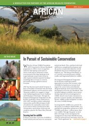 Download (English) - African Wildlife Foundation