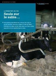 Seule sur le sable… - Fédération des producteurs de lait du Québec