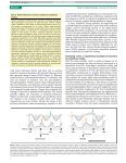 Arnal cortical oscillations.pdf - Page 4