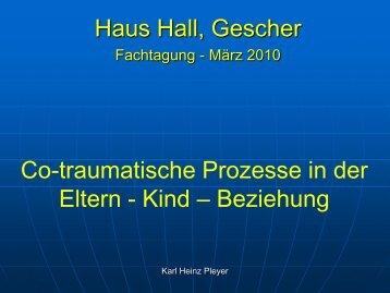 """Tagungsreader """"Ko-traumatische Prozesse - Haus Hall"""
