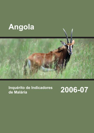 Angola Inquérito de Indicadores de Malária 2006-07 ... - Measure DHS