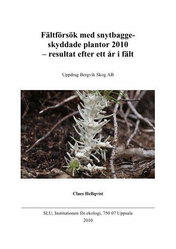 Fältförsök med snytbaggeskyddade plantor 2010 - SLU