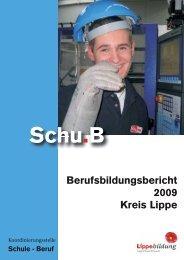 Berufsbildungsbericht 2009 Kreis Lippe Inhalt - Schu.B