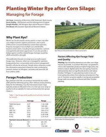 Planting Winter Rye after Corn Silage: - Integrated Pest and Crop ...
