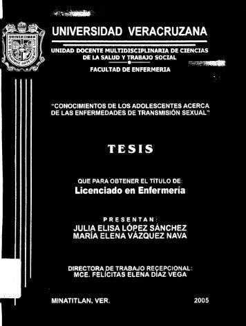 tesis-0244