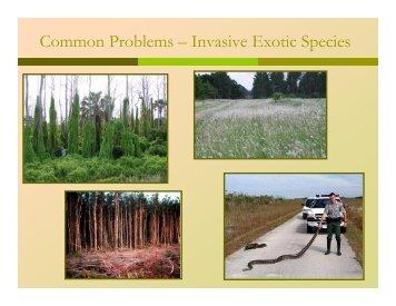 Common Problems – Invasive Exotic Species - Florida Invasive ...
