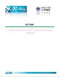 identificación de las micro, pequeñas y medianas empresas