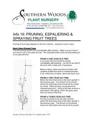Info 19 - Fruit Trees - Pruning, Espaliering ... - Southern Woods