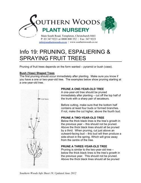Info 19 Fruit Trees Pruning Espaliering Southern Woods