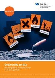 Gefahrstoffe am Bau - GISBAU