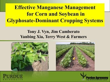 Effective Manganese Management for Corn and Soybean in Glyphosate ...