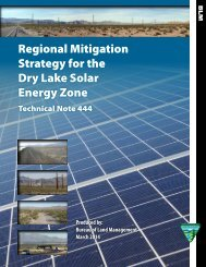 Regional Mitigation Strategy for the Dry Lake Solar Energy Zone, Technical Note 444 (March 2014)
