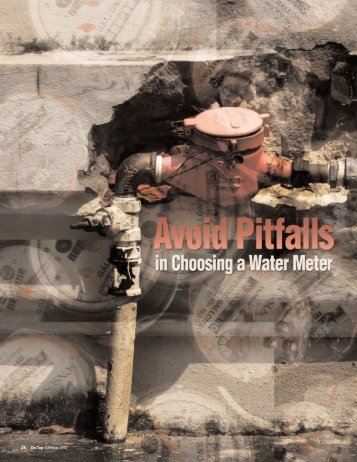 Avoid Pitfalls in Choosing a Water Meter - National Environmental ...