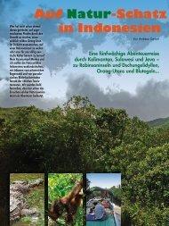 Auf Natur-Schatz suche in Indonesien - Globetrotter-Magazin.