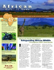 Safeguarding African Wildlife - African Wildlife Foundation