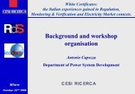 Background and workshop organisation