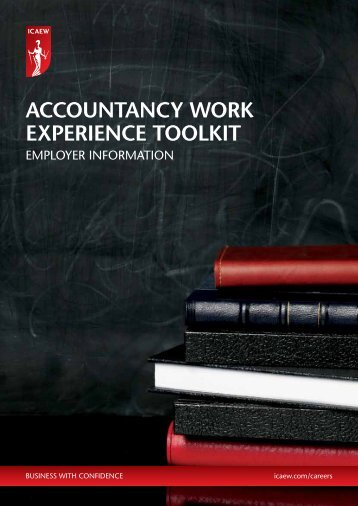 ACCOUNTANCY WORK EXPERIENCE TOOLKIT - ICAEW