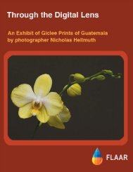 Nicholas Photo Exhibit - Wide-format-printers.org