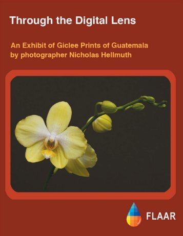 Nicholas Photo Exhibit - Wide-format-printers.org