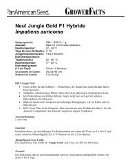 Impatiens Jungle Gold - Deutsch 3-04 - PanAmerican Seed